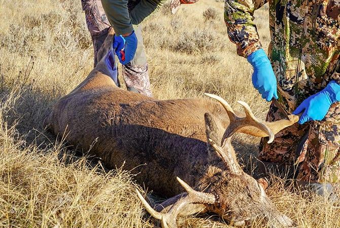 deer season processing troy il